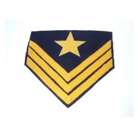 Hodnost Ordnance Sergeant Cavalry ACW