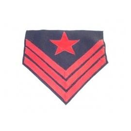 Hodnost Ordnance Sergeant Artillery ACW