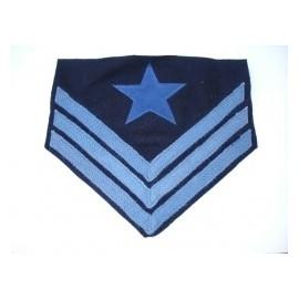 Hodnost Ordnance Sergeant Infantry ACW