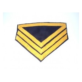 Hodnost Co. Qm. Sgt. Cavalry ACW