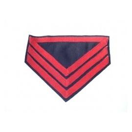 Hodnost Co. Qm. Sgt. Artillery ACW