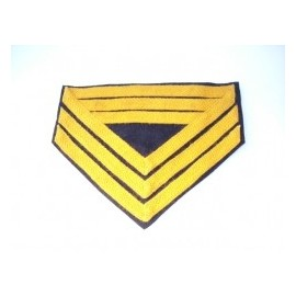 Hodnost Regt. Qm. Sgt. Cavalry ACW